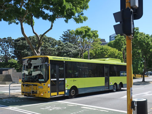 Wellington Public Transit Bus